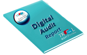 Digital Audio report Cover Image TROOL Social Media